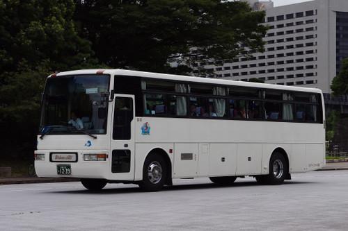 Imgp33431