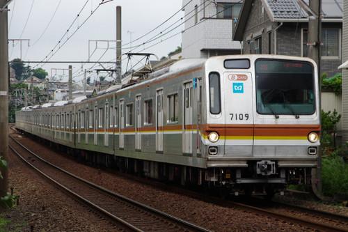 Imgp31081