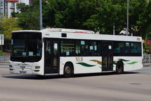 Imgp43041