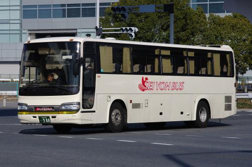 Imgp55491