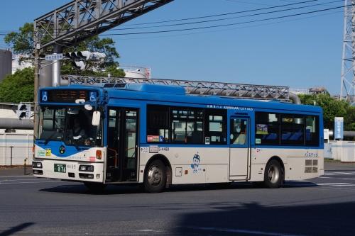 Imgp49651