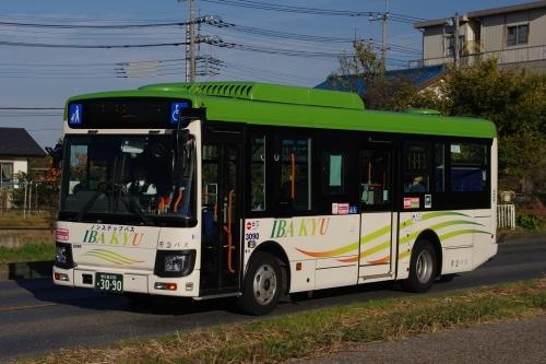 Imgp02031