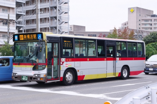 Imgp53391